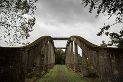 Abandoned bridge (YasmineP) Tags: bridge pont abandoned abandonné autumn automne grey green grass fall train belgium belgique hainaut wallonia canoneos7d canon eos7d 1585 15mm merbeslechâteau architecture tree