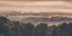 26092016-DSC_0045 (vidjanma) Tags: mabompré clocher brume vallée ardenne