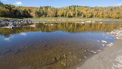 Automne, autumn - Rivière Chaudière, Beauce, PQ, Canada - 4709 (rivai56) Tags: automne autumn rivièrechaudière beauce pq canada feuilles a77 réflexion dans leau reflection