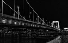 Erzhebet Bridge, Budapest / Мост Эржебет, Будапешт (dmilokt) Tags: город пейзаж ночь река венгрия мост bridge city landscape night river hungary dmilokt чб bw черный белый black white