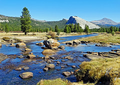 Tuolumne River and Meadow, Yosemite 10-19 (inkknife_2000 (11 million views)) Tags: easternsierranevada yosemitenationalpark california usa landscapes mountains dgrahamphoto creek rocks waterreflections calmwater tuolumnemeadow tuolumneriver autum lembertdome trees pines gravelriverbank rapids rocksinriver