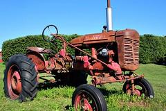 VINTAGE TRACTOR (MIKECNY) Tags: tractor vintage antique transportation ellmsfamilyfarm