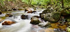Ilsetal/Harz (r.wacknitz) Tags: harzmountains harz ilsetal sachsenanhalt fluss stream nature nationalpark landscape nikon tamron18200