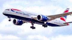 Boeing 787-8 Dreamliner G-ZBJM British Airways (William Musculus) Tags: london heathrow airport lhr egll aviation plane airplane spotting william musculus boeing 7878 dreamliner gzbjm british airways ba baw