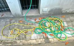 Du fil à retordre (Robert Saucier) Tags: rome roma pavement boyau hose trottoir sidewalk img6627 plongée vudenhaut
