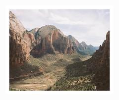(iconicturn) Tags: utah zion national park unitedstates usa america north analog analogue mediumformat 120 6x7 kodak portra mamiya7 mamiya nature mountain mountains valley landscape