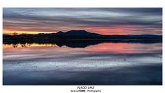 Placid lake (Ignacio Ferre) Tags: embalsedesantillana santillanareservoir manzanareselreal madrid españa spain lago lake nikon landscape paisaje naturaleza nature sunset puestadesol anochecer agua water