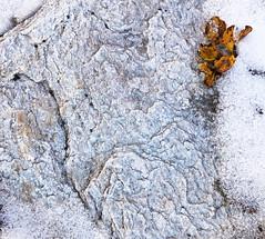 minimal art in nature