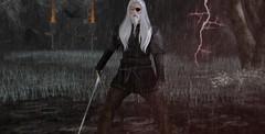 Young Odin (Beowulf Morgwain) Tags: second life sl secondlife surreal virtual odin raven midgard yggrasil crow promise walhall valhall dutch tilt fantasy mystic scenary roleplay amazing exotic supernatural dark edda hugin munin
