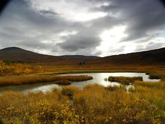 DSC01994 (dration) Tags: sweden lapland landscape waterfall sky swamp