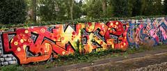Trackside Graffiti (wojofoto) Tags: amsterdam graffiti streetart nederland netherland holland wojofoto wolfgangjosten trackside railway spoorweg spoor twice