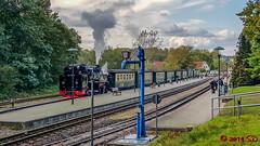 Rasender Roland (Stefan's Gartenbahn) Tags: rügen db dbag deutschebahn rasenderroland pressnitztalbahn rübb br101 steuerwagen
