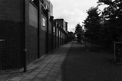 Street (lightersideofdark) Tags: blackwhite street streetphotography dark outside outdoors cloud sky brickwall brick wall architecture urban old windows tree trees