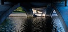 Stockholm, September 19, 2019 (Ulf Bodin) Tags: bicycle bridge kungsbron water sweden outdoor södermälarstrand summer bro biker cykel cyklist sverige canonrf85mmf12lusm stockholm streetphotography canoneosr cycling urbanlife stockholmslän