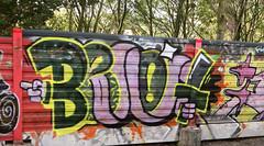 Trackside Graffiti (wojofoto) Tags: amsterdam graffiti streetart nederland netherland holland wojofoto wolfgangjosten trackside railway spoorweg spoor benoi benoit