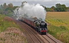fields of maize (midcheshireman) Tags: steam train locomotive bulleid pacific 35018 britishindialine mainline cheshire