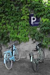 Vélos gémeaux ! (Tonton Gilles) Tags: vélos cycles bicyclettes vélocipèdes bleu vert lierre panneau parking deux roues détail urbain