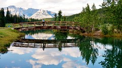 Cascade Ponds (krystyna p) Tags: pond ponds casadeponds park banff banffnationalpark national august summer green water bridge mountain mountains landscape family daughter dog zoey reflection tree trees clouds blue cloud sony sonyalpha sonyilce5000 wood woodenbridge arched archedbridge pristine pristinepond rockies canadianrockies alberta