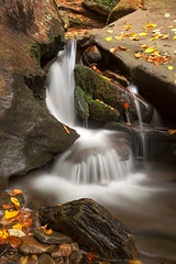 Crescent Crater Falls (Bold Frontiers) Tags: water waterfall waterscape cascades liquid fluid flow stream river leaves foliage moss mossy landscape nature natural scene scenic scenery background rocks stone environment rickettsglen statepark pennsylvania usa unitedstates america travel tourism outside outdoor exterior beauty beautiful pretty surreal longexposure motion yellow orange brown green white color colorful vibrant fall autumn
