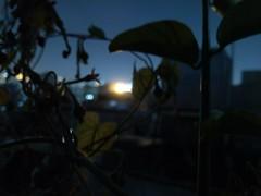 capturing at night (Aladdin Abu Taha) Tags: capturingatnight night nightsky