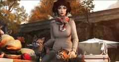 #NeridoFall2019 (Bellsophie Resident) Tags: contest neridofall2019 photography photocontest sim secondlife explore