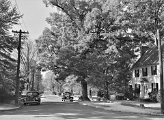 The Golden Hour: Street in Chapel Hill, North Carolina, Fall 1939. (polkbritton) Tags: marionpostwolcott 1930s classiccars chapelhill northcarolinahistory streetphotography fsaowi libraryofcongresscollections