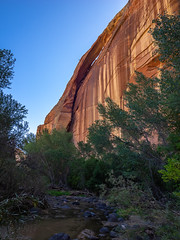 Cliff-House Arch View (xjblue) Tags: 2019 escalantecanyonstocapitalreef october southernutah canyon desert fall landscape sandstone trip naturalarch natural span redrock escalante river trail backpacking