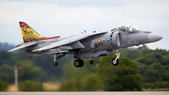 Harrier (Bernie Condon) Tags: yeovilton rn navy royalnavy airday rnas hmsheron airshow display aircraft plane flying aviation uk bae mcdonnelldouglas harrier av8b matador fighter span amada spanishnavy warplane jet vstol jumpjet