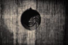 Ne jamais couvrir le sourire des dieux - 01 (Stéphane Barbery) Tags: osaka sculpture bois daifuku daikoku dieux japan japon kami kyoto sourire 京都 日本