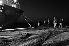 Fishermen (roksoslav) Tags: postira brač dalmatia croatia 2019 fishermen ribari