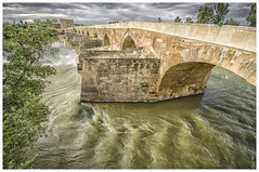 At Puente Romano (My digital Gallery) Tags: cordoba spain europe eu puenteromano romanbridge römischebrücke water green yellow bridge roman guadalquivir birds sky gray