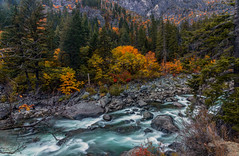 Autumn Rush (Cole Chase Photography) Tags: autumn washingtonstate tumwatercanyon pacificnorthwest october