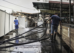 Green market at the end of the workday (Braca Stefanovic) Tags: workers washing city street photography scene real people braca stefanovic belgrade serbia europe occupation job water authentic men working stalls greenmarket hose tube zemun wet