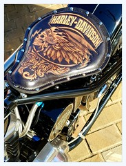 a gathering of Harleys (overthemoon) Tags: uk england northyorkshire scarborough northeastcoast seaside motorbike harleydavidson saddle leather
