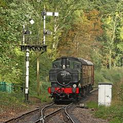 6412 GWR 0-6-0PT (Roger Wasley) Tags: 6412 gwr bishopslydeard 060 tank steam engine locomotive train uk heritage preserved preservation pannier greatwestern railway wsr