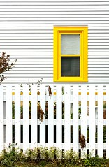 Yellow Trim (Karen_Chappell) Tags: yellow trim white fence house home inn building architecture window green clapboard wood wooden paint painted quidividi newfoundland nfld avalonpeninsula atlanticcanada eastcoast canada canonef24105mmf4lisusm stjohns city lines geometry geometric