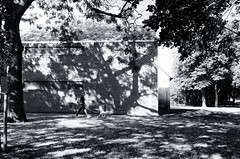 Spot the Dog (esallen52) Tags: park dog woman light shadows trees buildings outdoors daytime blackwhite grass foliage