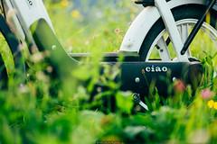 Ciao (Nicola Pezzoli) Tags: italy italia lombardia val seriana bergamo leffe gandino nature natura ciao piaggio bike moto sunset grass erba campo