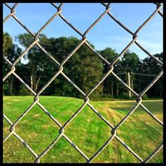 The Grass is Always Greener (Timothy Valentine) Tags: grass large hillside green friday 2019 0919 fence eastbridgewater massachusetts unitedstatesofamerica