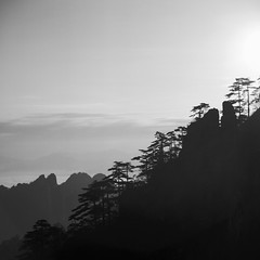 Untitled (richardhwc) Tags: ricohflex viis blackandwhite kodak tmax100 huangshan anhui china anastigmat 80mmf35 mediumformat 120 6x6 film