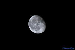 La Lune dans sa splendeur (Ezzo33) Tags: nammour ezzat ezzo33 france aquitaine ciel paysage sony rx10m3 lune moon bordeaux gironde