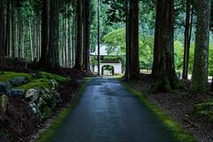 古地谷阿弥陀寺30・Amidadera Temple (anglo10) Tags: 京都市 京都府 japan kyoto 大原 寺院 temple