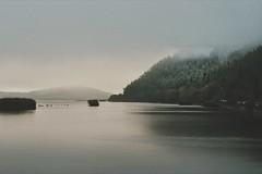 ❇ My Lake ❇ (PattyK.) Tags: ioannina giannena epirus ellada balkans greece griechenland landscape landscapephotography water fog mountains βαλκάνια ελλάδα λίμνη παμβώτιδα λίμνηπαμβώτιδα νερό φύση τοπίο οκτώβριοσ φθινόπωρο autumn october 2019 whereilive snapseed nikond3100