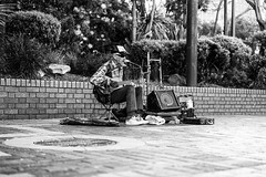 Old Timer Busker (Leighton Wallis) Tags: sony alpha a7r mirrorless ilce7r 55mm f18 emount sydney newsouthwales nsw australia circularquay sydneyoperahouse ferry busker tourists