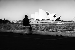 Circular Quay Contemplation (Leighton Wallis) Tags: sony alpha a7r mirrorless ilce7r 55mm f18 emount sydney newsouthwales nsw australia circularquay sydneyoperahouse ferry busker tourists