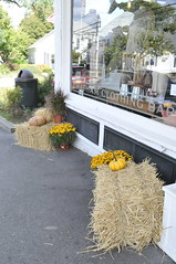_DSC7146 (horslips5) Tags: newengland chatham capecod massachusetts fall autumn