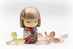 Yoko (Through Serena's Lens) Tags: stilllife flower closeup flora whitebackground yoko tabletop hydrangeas driedflowers kimmidoll canoneos6dmarkii lookingcloseonfriday highkey