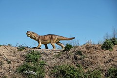 Gratwanderung (Sockenhummel) Tags: dinopark mölschow usedom dinosaurier jurassischenpark jura dinosaur tier berg grat fuji xt10