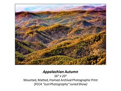 "Appalachian Autumn • <a style=""font-size:0.8em;"" href=""http://www.flickr.com/photos/124378531@N04/48880416196/"" target=""_blank"">View on Flickr</a>"