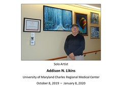 "Addision Likins, Artist • <a style=""font-size:0.8em;"" href=""http://www.flickr.com/photos/124378531@N04/48880416216/"" target=""_blank"">View on Flickr</a>"